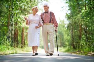 Resveratrol Improves Bone Density