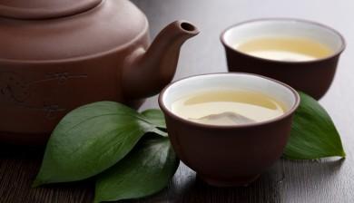 Green Tea Extract Kills Oral Cancer Cells