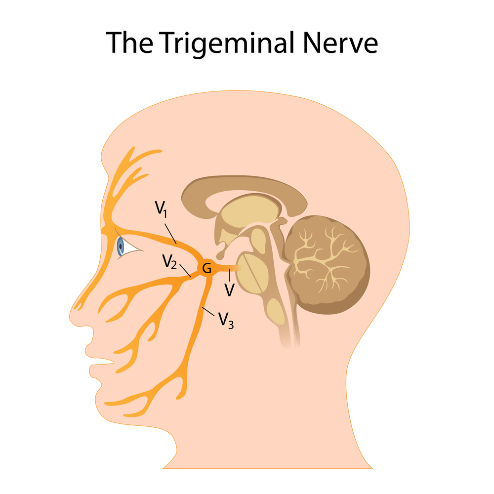 What causes facial neuralgia and numbness