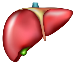 Viral Hepatitis (The Natural Target For These Viruses Is The Liver)