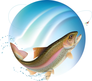 Diphyllobothrium Latum (Fish Tapeworm Transmitted By Raw Fish)