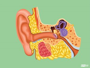 New Earwax Cleaning Guidelines