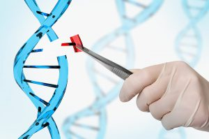 Diagnosing Genetic Diseases