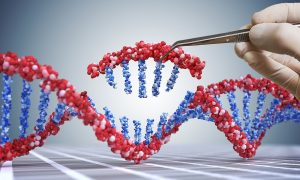 Gene Therapy for Diabetes