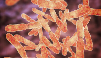 Gut Bacteria Interact with Vitamin D Blood Levels